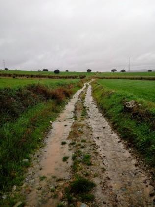 Sentieri e fango