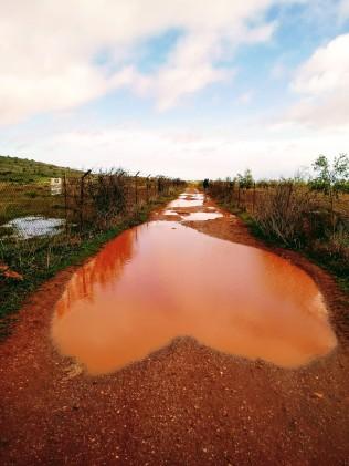 Sentieri e fango1 (2)