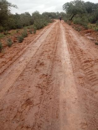 Sentieri e fango2