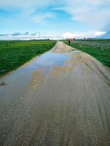 Sentieri e fango3 (2)